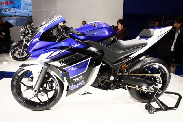 2015 Yamaha YZF R25